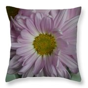 Lavender Daisy Throw Pillow