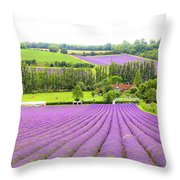 Lavender Farms In Sevenoaks Throw Pillow