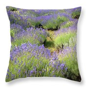 Lavender Field, Tihany, Hungary Throw Pillow