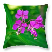 Lavender Fireweed Throw Pillow