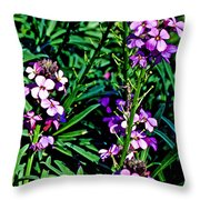 Verbena At Pilgrim Place In Claremont-california   Throw Pillow