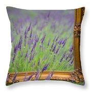 Lavender Frame Throw Pillow