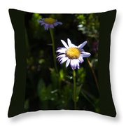 Lavender Friends Throw Pillow