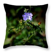 Lavender Hue Throw Pillow