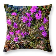 Lavender In The Wild Throw Pillow