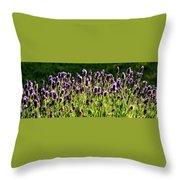 Lavender Pano Throw Pillow