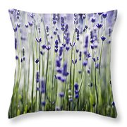 Lavender Patterns Throw Pillow