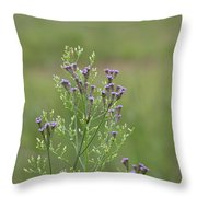 Lavender Purple Verbena Wildflowers  Throw Pillow
