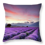 Lavender Season Throw Pillow by Evgeni Dinev