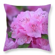 Lavender Spring Throw Pillow by Jimi Bush