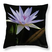 Lavender Tropical Water Lily Throw Pillow