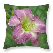 Lavender Vista - Daylily Throw Pillow
