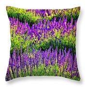 Lavenderous Harmony Throw Pillow