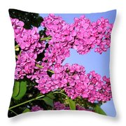 Lavish Lilacs Throw Pillow