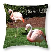 Lawn Ornaments Throw Pillow