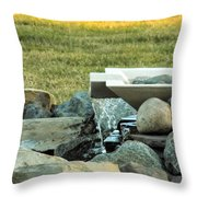 Lawn Water Feature Throw Pillow