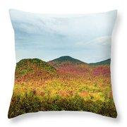 Layered Adirondack Colors Throw Pillow