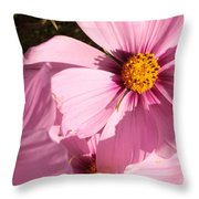 Layers Of Pink Cosmos Throw Pillow