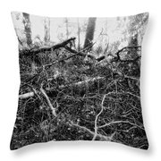 Layers Of Time Passed Throw Pillow