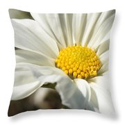 Layers Of White Cosmos Throw Pillow