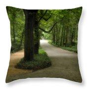 Lazienki Park Warsaw Diffused Throw Pillow