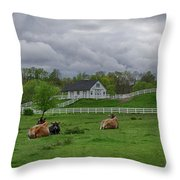 Lazy Afternoon In The Country Throw Pillow