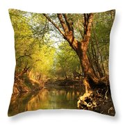 Lazy Afternoon On The Creek 2 Throw Pillow