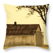 Lazy Days Barn  Throw Pillow