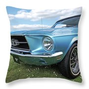 Lazy Days Throw Pillow