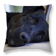 Lazy Eyes Throw Pillow