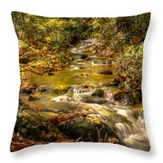 Lazy Mountain Water Fall Throw Pillow