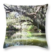 Lazy River Throw Pillow