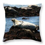 Lazy Seal Throw Pillow