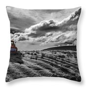 Le Camion Rouge Throw Pillow