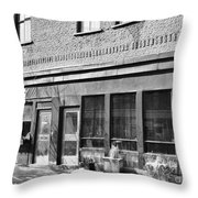 Le Cheval Blanc Throw Pillow