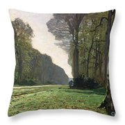 Le Pave De Chailly Throw Pillow