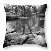 Le Tort Reflection Throw Pillow