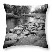 Le Tort Spring Run Throw Pillow