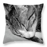 Lea Sleepy Cat Throw Pillow