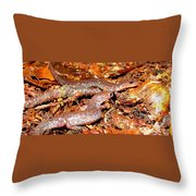 Leadback Salamander Pair Throw Pillow
