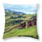 Leader Road View Throw Pillow