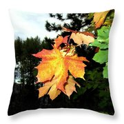 Leading The Way Into Fall Throw Pillow
