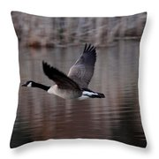 Leading The Way Throw Pillow