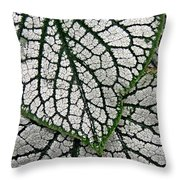 Leaf Abstract 19 Throw Pillow