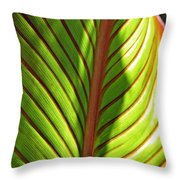 Leaf Abstract  23 Throw Pillow