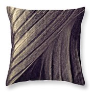 Leaf Abstract  24  Sepia   Throw Pillow