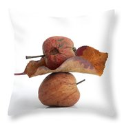 Leaf And Apples Throw Pillow by Bernard Jaubert