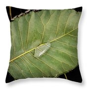 Leaf And Water Throw Pillow