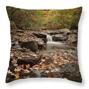 Leaf Confetti Throw Pillow