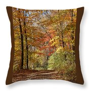 Leaf Covered Path Throw Pillow by Kathy DesJardins